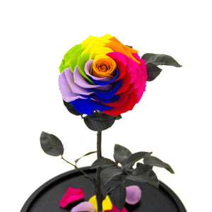 The Everlasting Rose - Rainbow - Luxe Bouquet roses that last a year