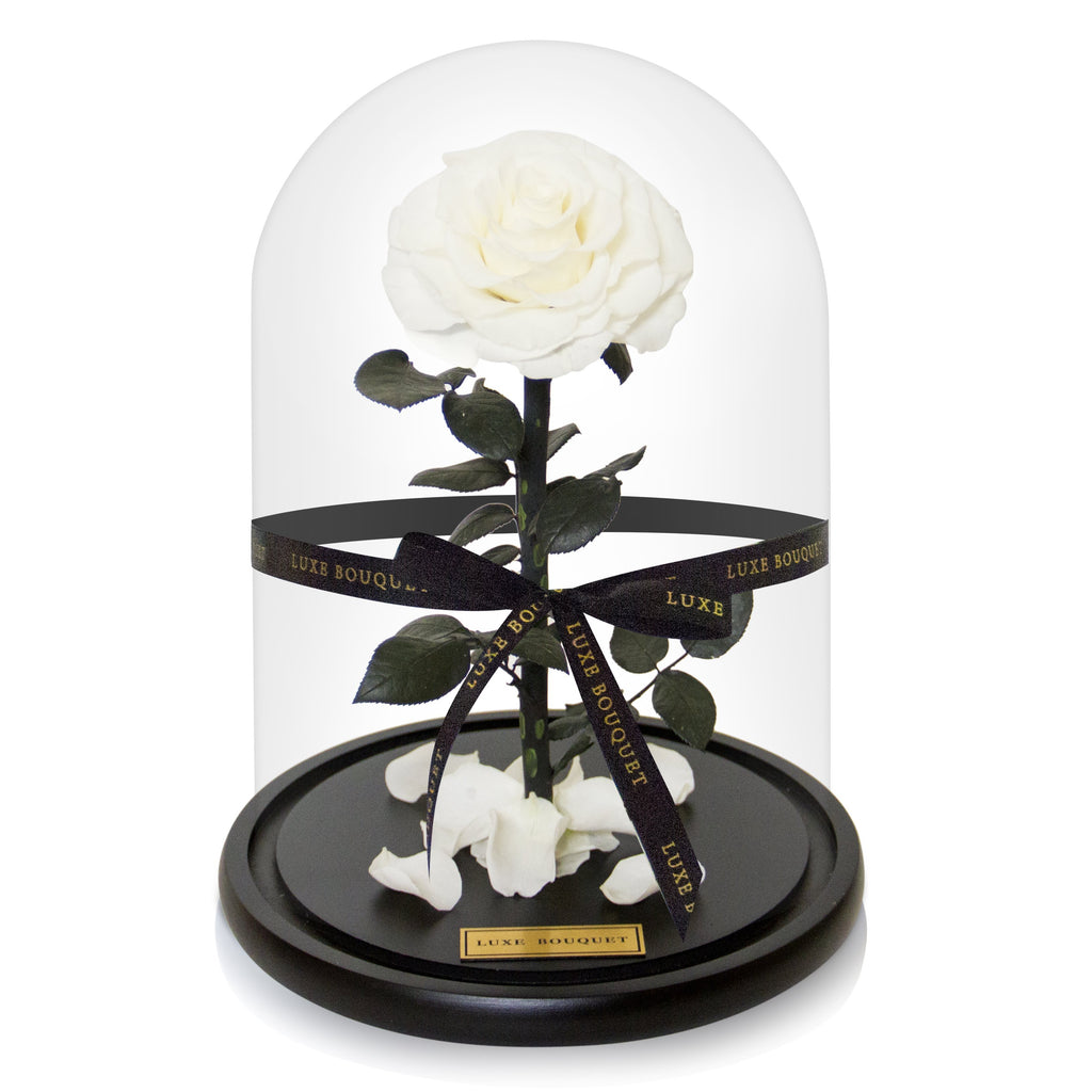 The Everlasting Rose - White - Luxe Bouquet roses that last a year
