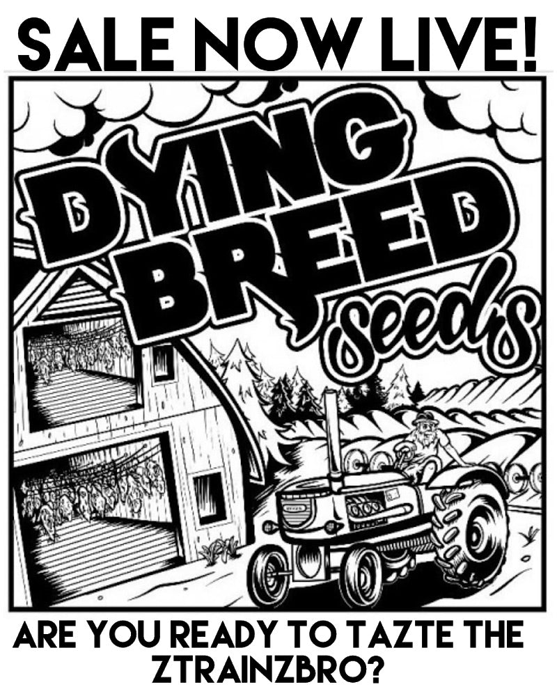 Dying Breed Seeds Back in Stock!