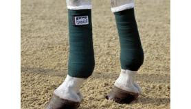 Eskadron Training Bandages Pony