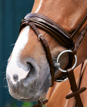 Passier Exchangeable Noseband Caveson Special Patent