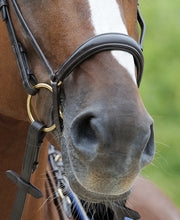 Passier Exchangeable Dropped Noseband