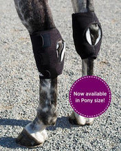 Ice Horse Pony Hock Wrap