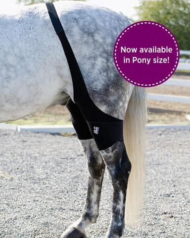 Ice Horse Pony Stifle Wrap