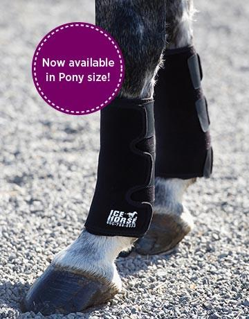 Ice Horse Pony Tendon Wrap