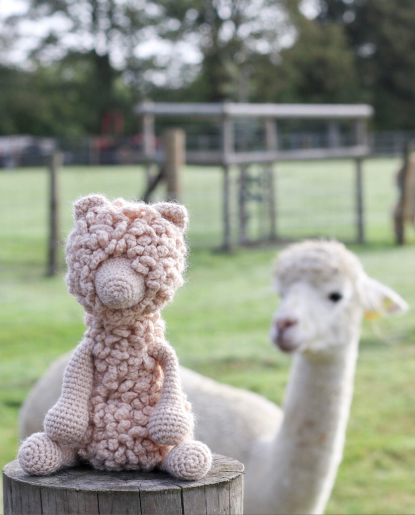 Crochet Kit - Quin the Huacaya Alpaca