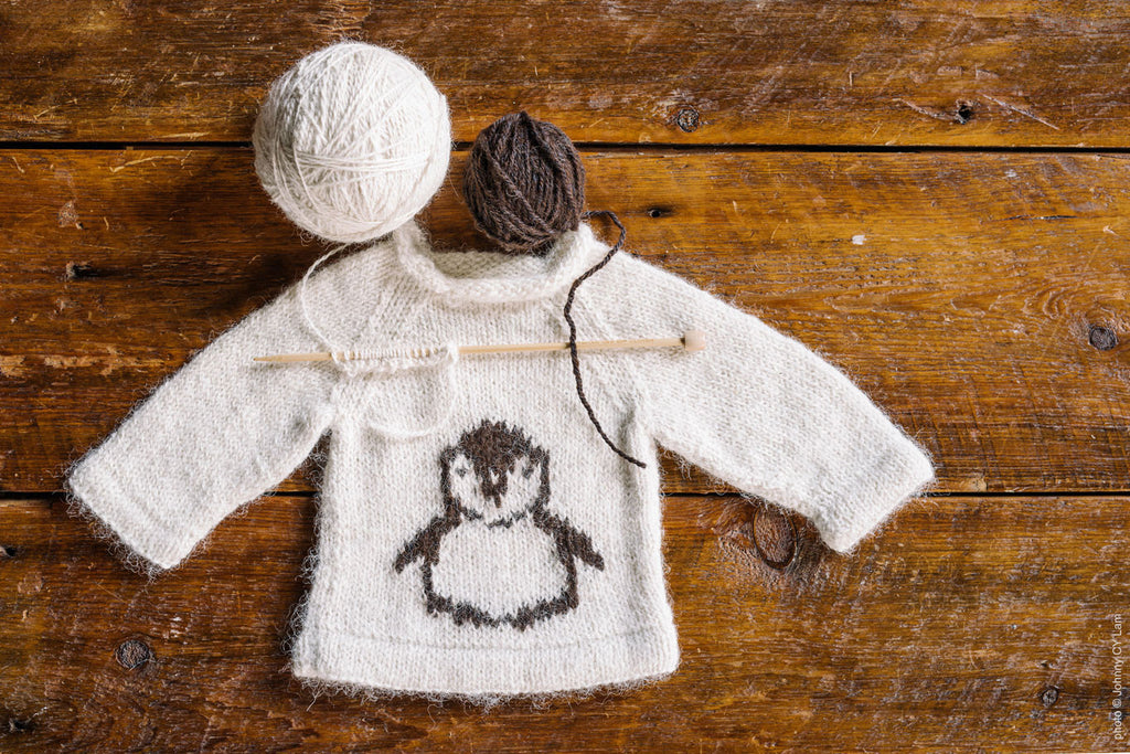 Sweater  - Children's Penguin - SHED Chetwyn Farms