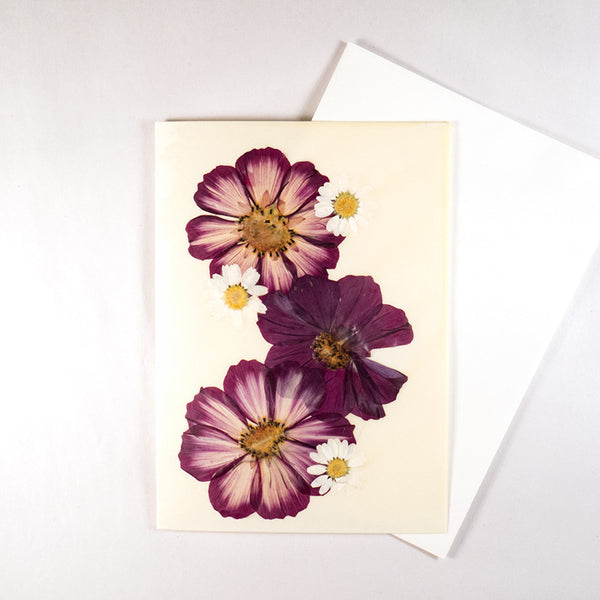 Cosmos Beeswax Card