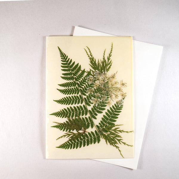 Mixed Fern Beeswax Card