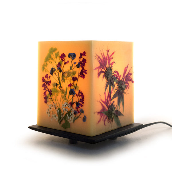 Summer Edition Table Lamp