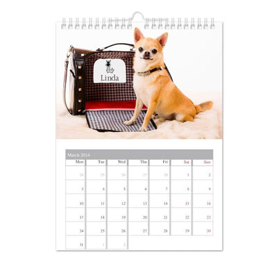 Personalised Your Barking Mad A4 Wall Calendar