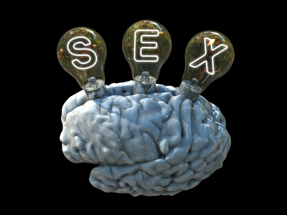 Great Sex Starts in the Brain-So Does Great Fantasy