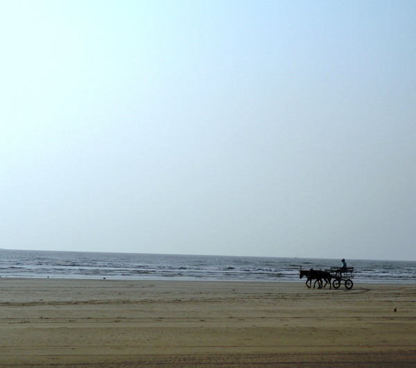 Nagaon Beach (Alibaug) : Stay in standard room with all meals (Veg/Non-Veg), Swimming Pool & MORE!