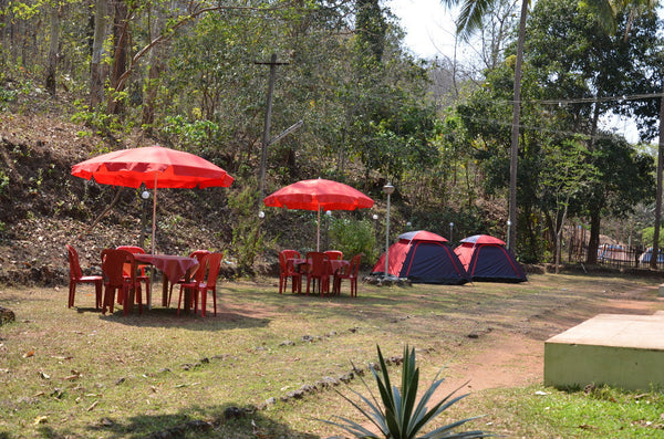 Dandeli: Stay in Dandeli Nature Camp, Jungle trail, Night Camp Fire with Music, All Meals (Veg/Non-Veg) & MORE!