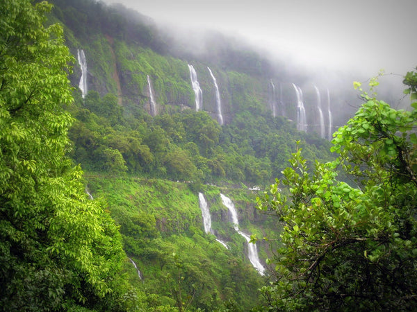 Amboli, A Heaven On Earth : Stay in Standard Room with Sightseeing, Jungle Night Trail with Wildlife Expert & More!