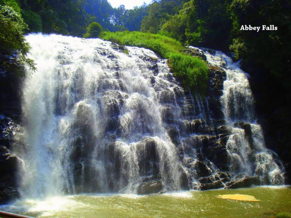 Coorg (Scotland of India):- 4Nights / 5Days: Stay in Lo Holidays Verified Luxury Resort/Hotel + Mysore/Coorg Sightseeing  & More!