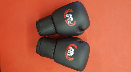 Leather SMMA Boxing Glove