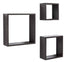 Bluewud Wall Decor Shelf & Display Rack - SkyBox (Wenge)
