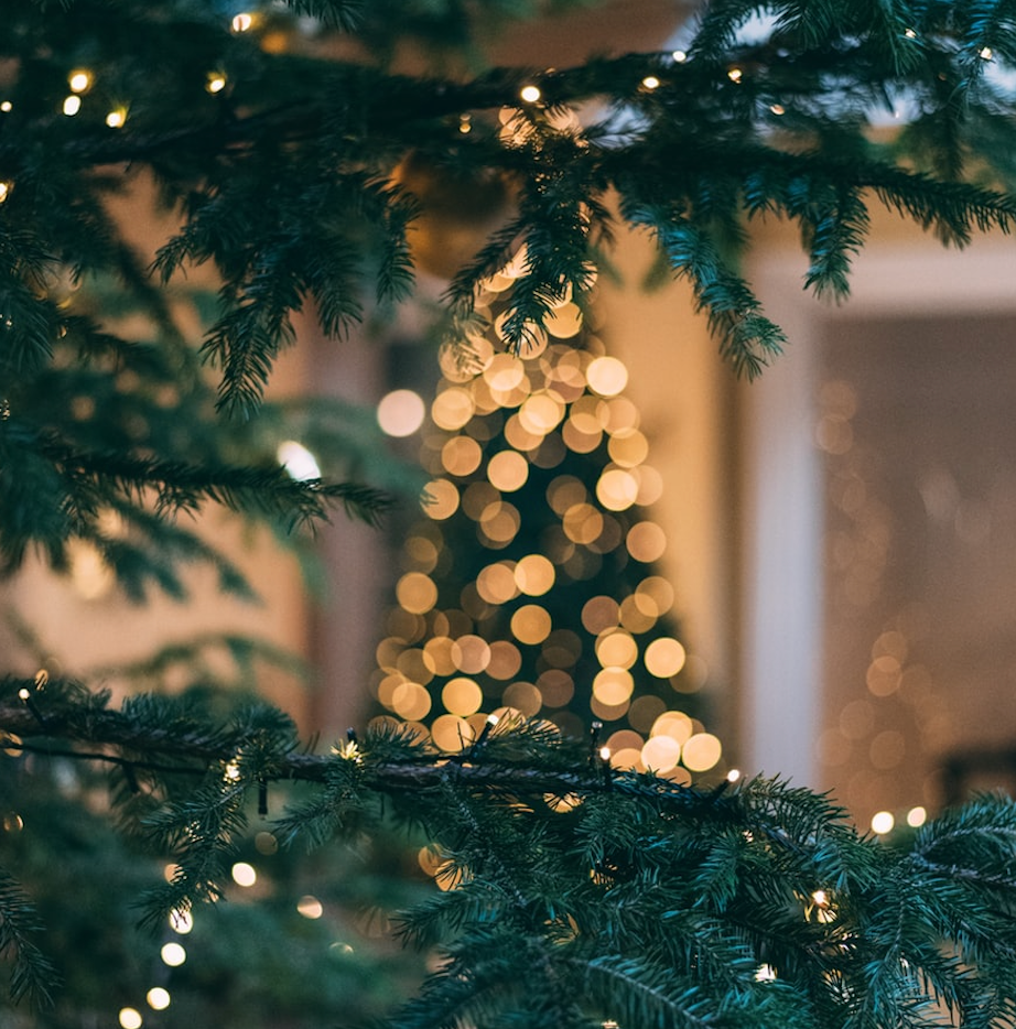 5 Secrets to Sustainable Christmas Holidays