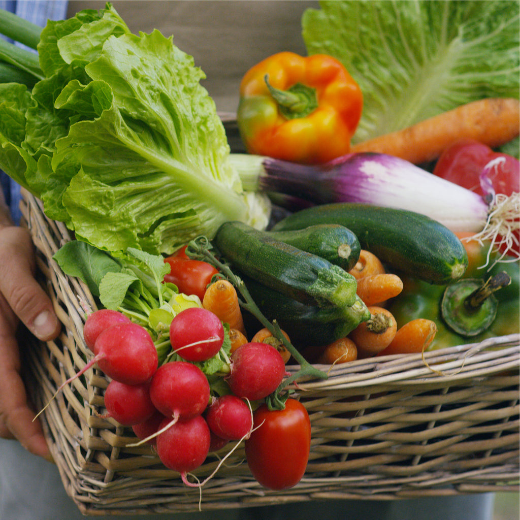 Eating Healthy in the Fall: Fresh Fruits and Vegetables