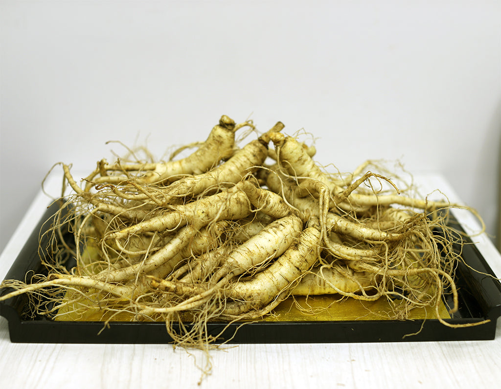 Fresh American Ginseng Arrived