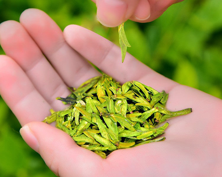 Our 2020 Spring Long-Jing (Dragon Well) has arrived!