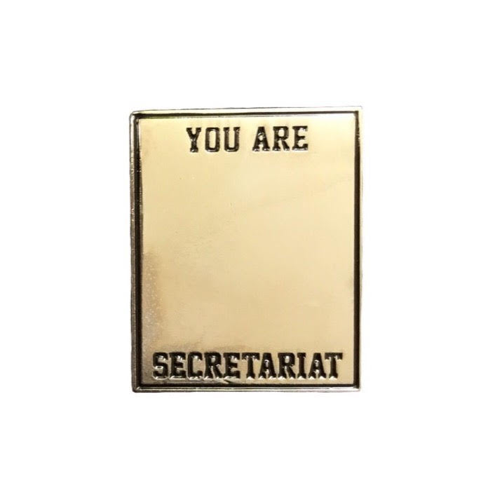 You are secreatariat enamel pin bojack horseman