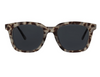 Endless Summer Sunglasses - Sun Grey Tortoise/Gold