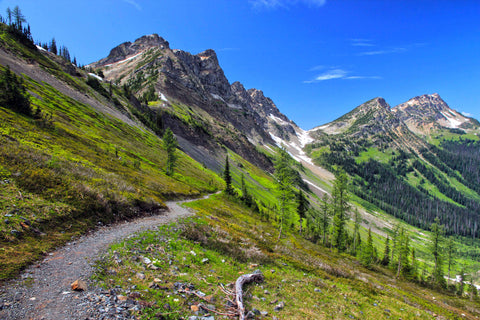 The Pacific Crest Trail in the Pacific Northwest