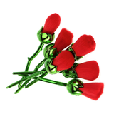 Red Roses Bouquet Makeup Brushes