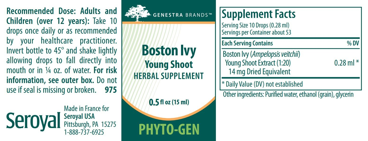 Genestra Brands Boston Ivy Young Shoot