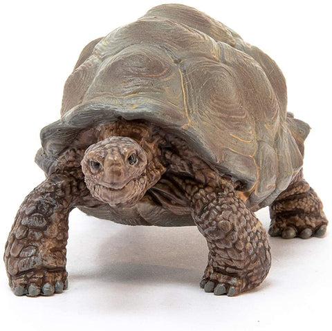 Image of Schleich Wild Life Giant Tortoise Educational Figurine