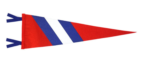 Lake Michigan Felt Pennant