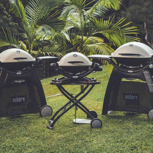 Which Weber Q is the right Q for you?