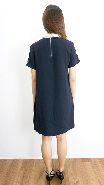 ZARA Basic preppy collared dress with sleeve details