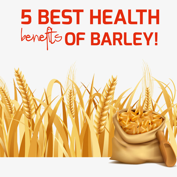 5 Best Health Benefits of Barley!