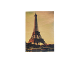 PP038 - Slim Passport Cover - Eiffel Tower