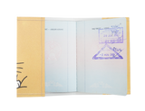 PP066 - Slim Passport Cover - Chii Cat