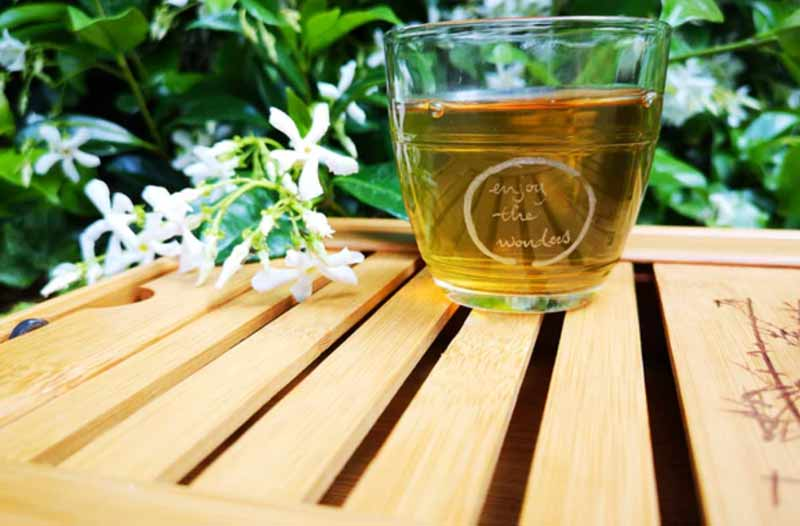 cup of green tea on the wooden table with green plant on the background