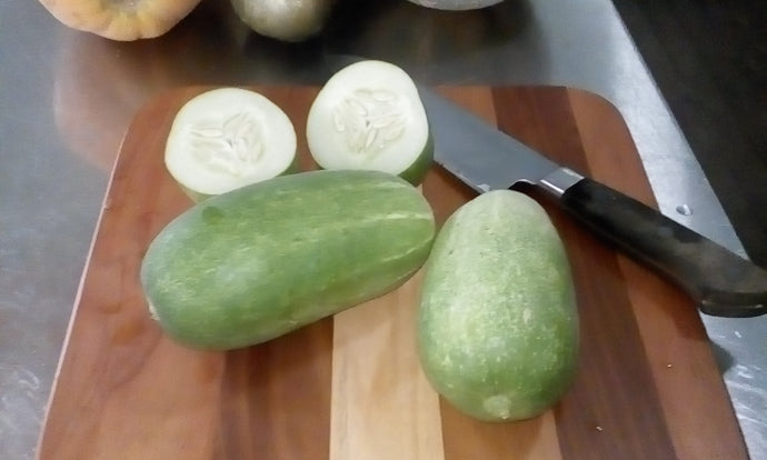 Cucumber Northern Star-Vegetables-Dundee Organix