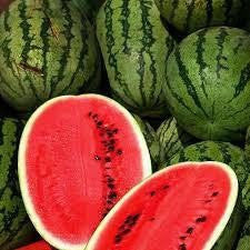 Watermelon ' Betty Blake '-Vegetables-Dundee Organix