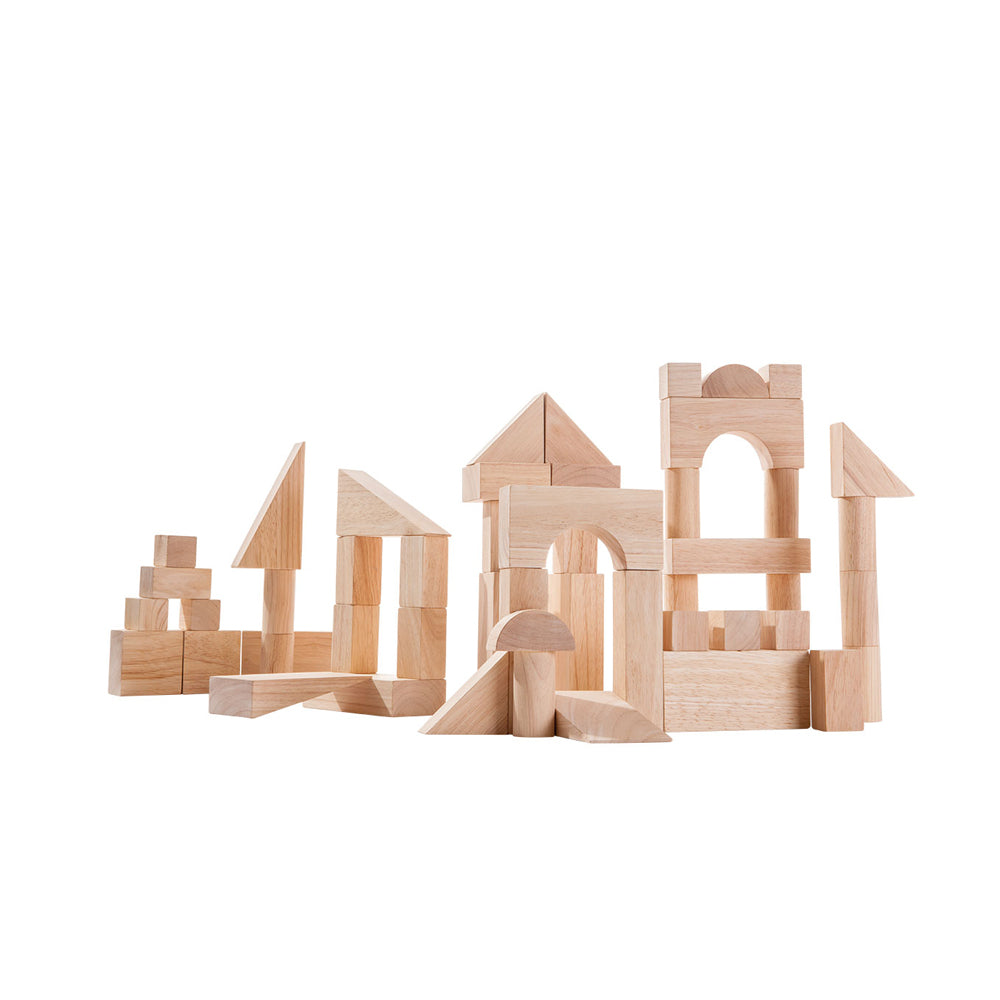 Plan Toys, 50 Unit Wooden Blocks