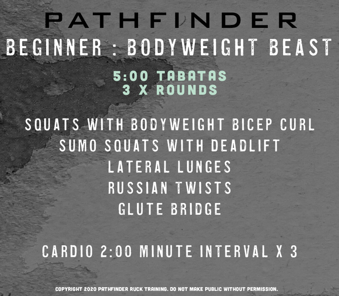 Beginner: Bodyweight Beast