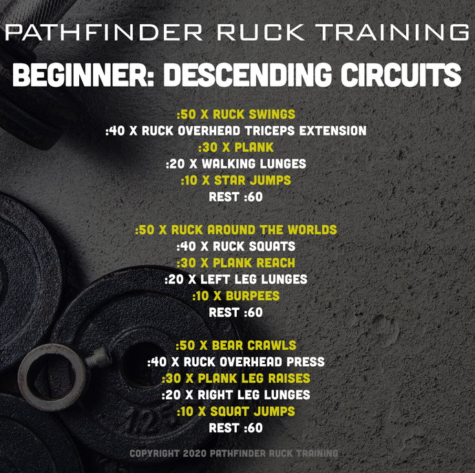 Beginner: Descending Circuit Training