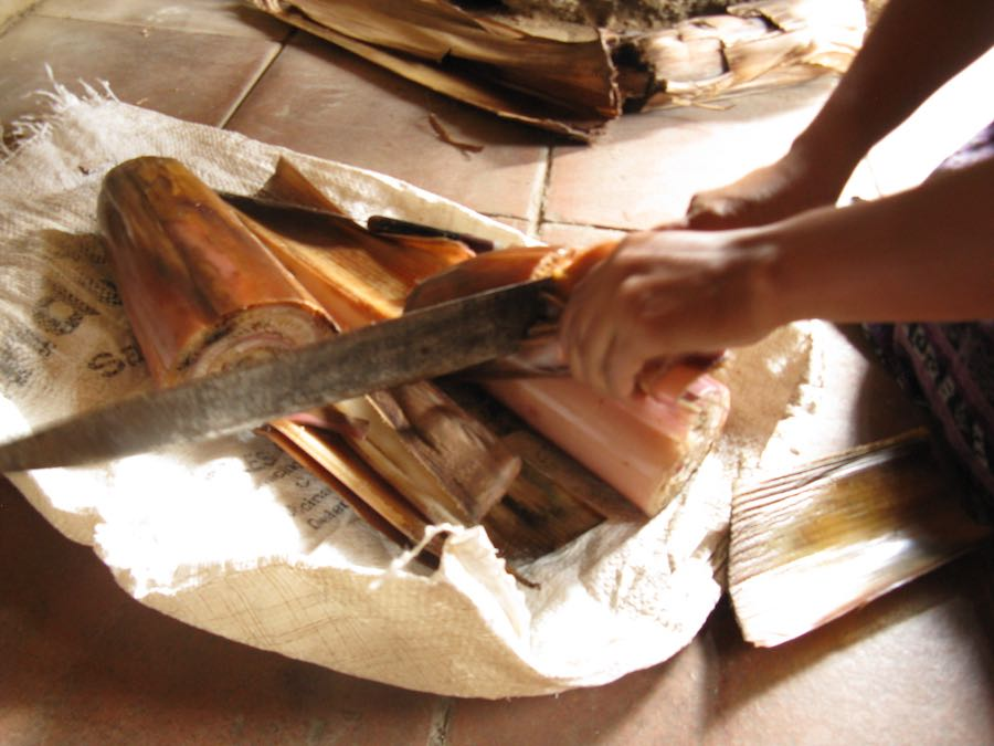 Natural dye process: Chopping the inner trunk of a banana plant to make a mordant
