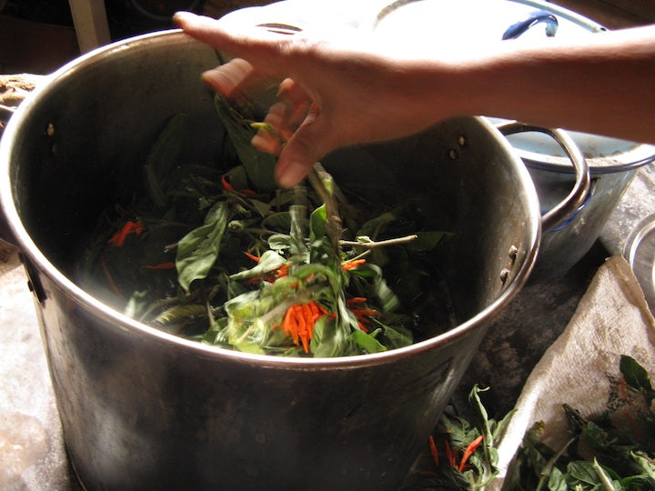 Natural dye process: placing the chopped sacatinta dye into boiling water