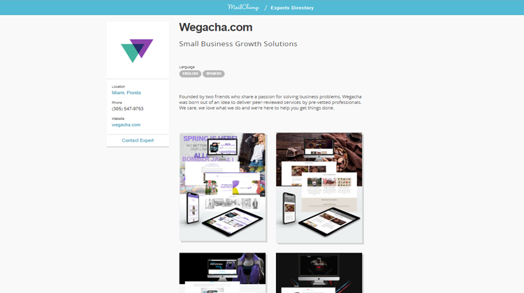 mailchimp_experts_wegacha