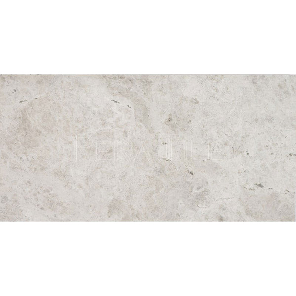 "12""X24""X1/2"" Silver Shadow Tile - Polished"
