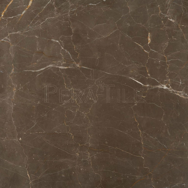 "18""X18""X1/2"" Olive Marrone Tile - Polished"