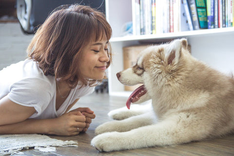 girl playing with dog better feeling